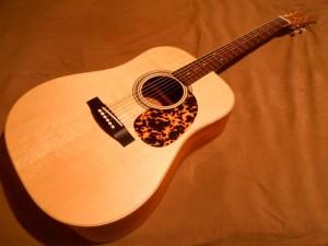 kytara D 1